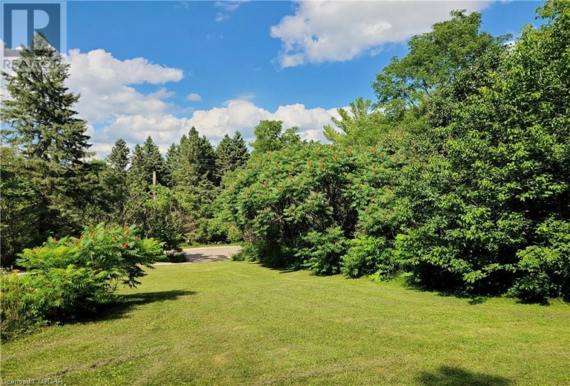 393 SOUTH RIVER Road, Elora, Ontario N0B1S0, 4 Bedrooms Bedrooms, ,3 BathroomsBathrooms,Single Family,For Sale,SOUTH RIVER,30826497